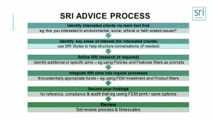 SRI-Advice-process-single-slide-300x225